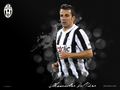 Del Piero wallpapers - alessandro-del-piero wallpaper