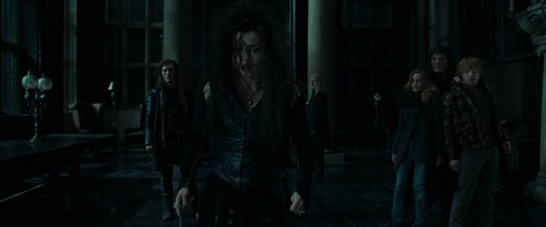 Bellatrix Lestrange fond d'écran containing a rue titled Harry Potter and the Deathly Hallows Part 1 (BluRay)