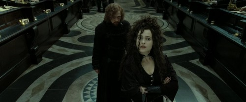 Bellatrix Lestrange Hintergrund titled Harry Potter and the Deathly Hallows Part 2 (BluRay)