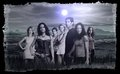 Lost - Characters Promo - lost photo