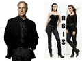 NCIS _Gibbs, Abby &amp; Ziva - ncis wallpaper