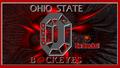 OHIO STATE BUCKEYES GO BUCKS!