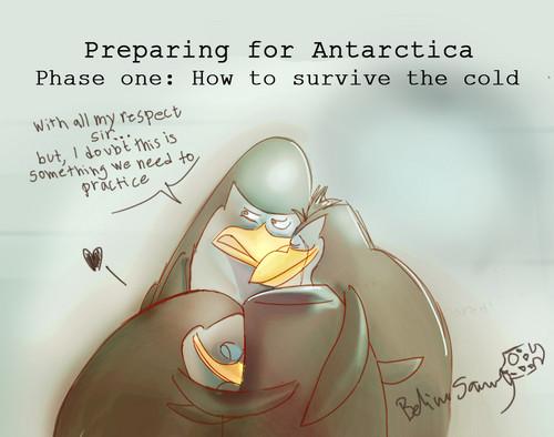 Preparing for Antarctica