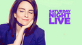 Tina Fey Hosts SNL:  April 10, 2010 - tina-fey photo