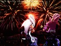 blaze and silver watching the fireworks