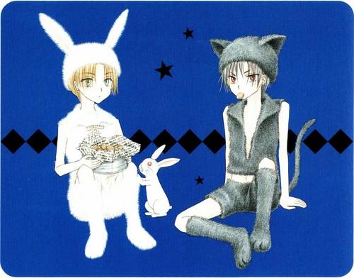 Natsume & Ruka