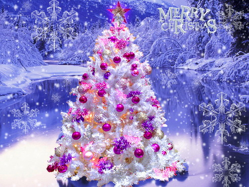 Christmas wallpaper containing a japanese plum, a japanese apricot, and a bouquet entitled Beautiful Christmas Tree