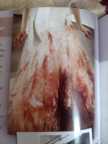 Bella's Bloody wedding dress