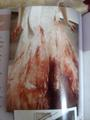 Bella's Bloody wedding dress - twilight-series photo