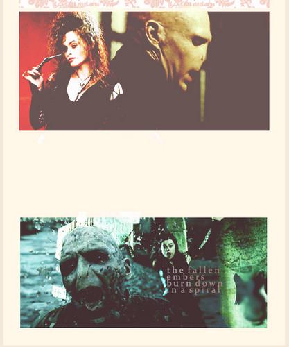 Bellatrix ☺