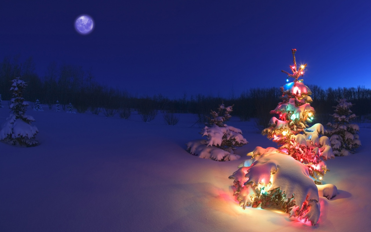 Christmas Wallpaper Christmas Wallpaper 27669653 Fanpop