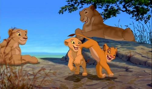lion image nude roi le nala