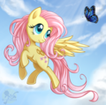 Fluttershy and schmetterling