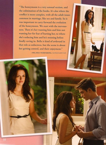 """HQ scans of the """"Breaking Dawn - Part 1"""" illustrated movie companion"""