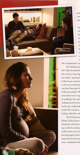 "HQ scans of the ""Breaking Dawn - Part 1"" illustrated movie companion"
