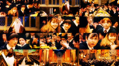 Harry Potter Philosopher stone tumblr