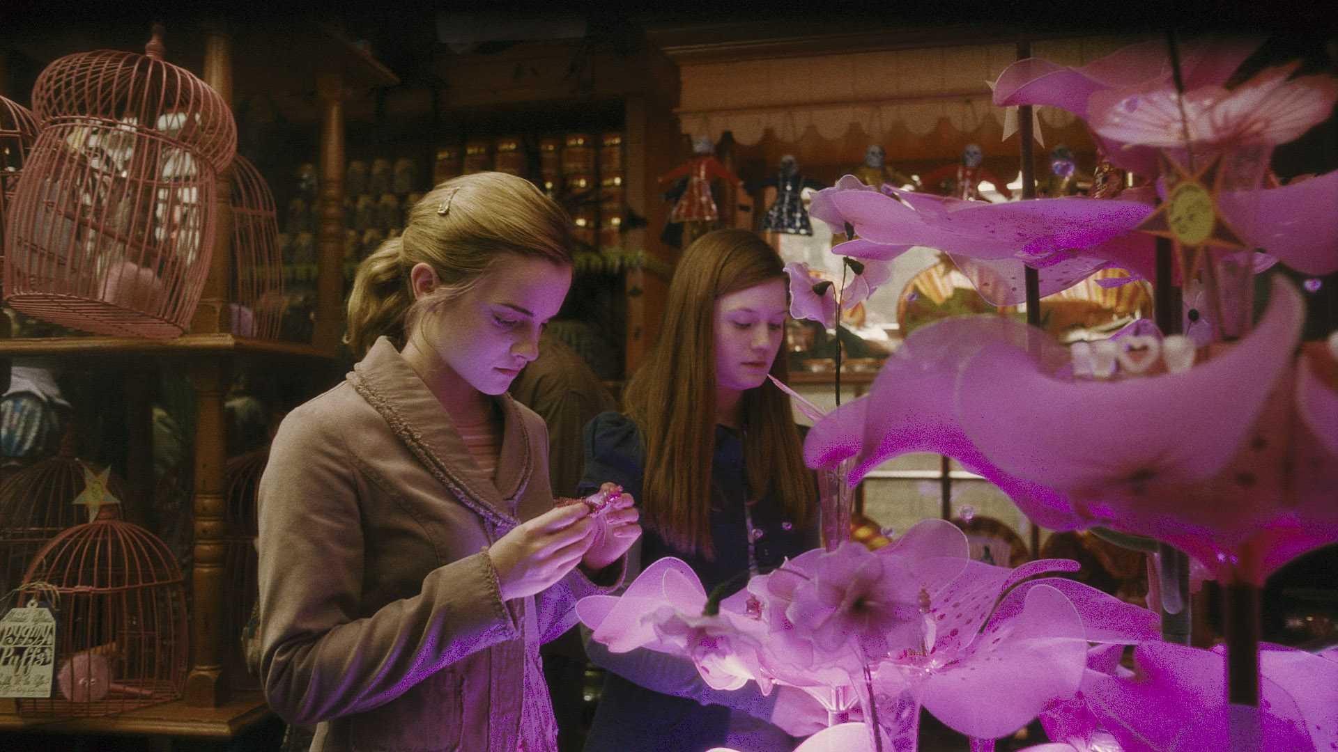 hermione ginny: