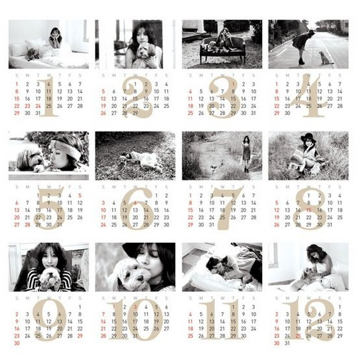 Lee Hyori 'Eco Project' 2012 calendar with her dog Soonshim