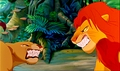 Nala and Simba's fight