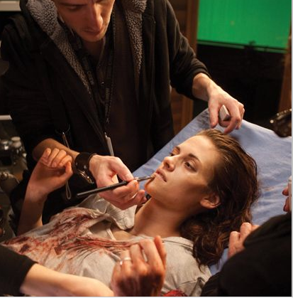 """New pics/scans from the """"Breaking Dawn - Part 1"""" illustrated movie companion"""