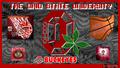 OSU BUCKEYES GO BUCKS!