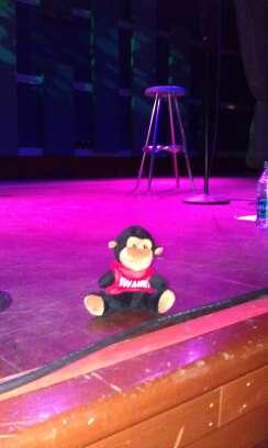 Paul Byrom- monkey