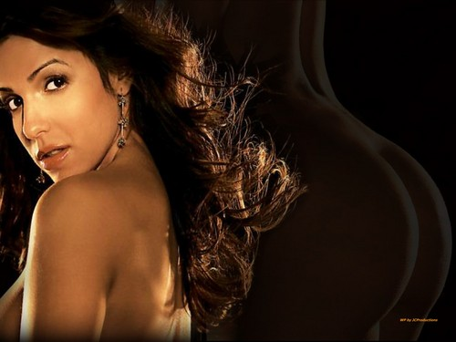 Vida Guerra wallpaper with a portrait entitled Vida Guerra' s Fine Behind