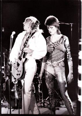 Ziggy Black & White