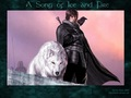 Jon Snow & Ghost - a-song-of-ice-and-fire wallpaper
