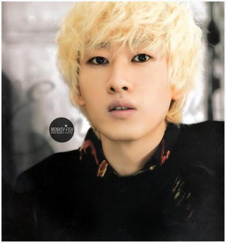 Eunhyuk Donghae 2012 دیوار Calendar