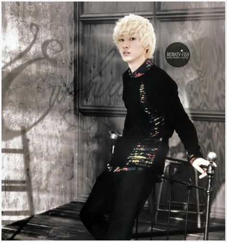 Eunhyuk Donghae 2012 ウォール Calendar