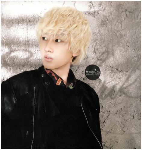 Eunhyuk Donghae 2012 muro Calendar