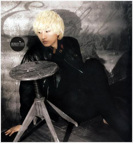 Eunhyuk Donghae 2012 Стена Calendar