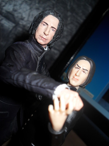 2 Snapes - severus-snape Photo