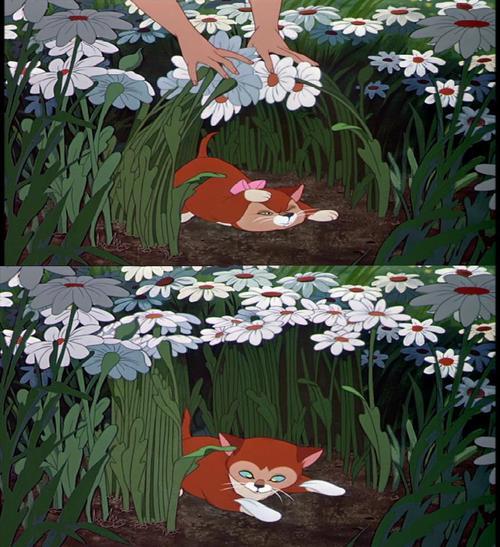 Alice In Wonderland Fanpop: Alice In Wonderland Photo (27742053)