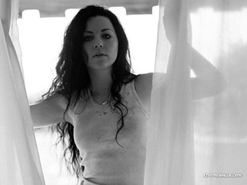 Amy ♥ Evanescence - evanescence Wallpaper