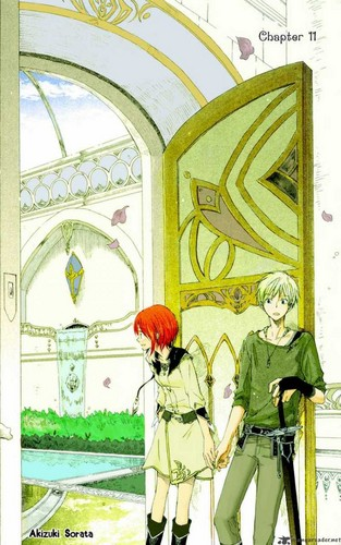 Chapter 11 Cover