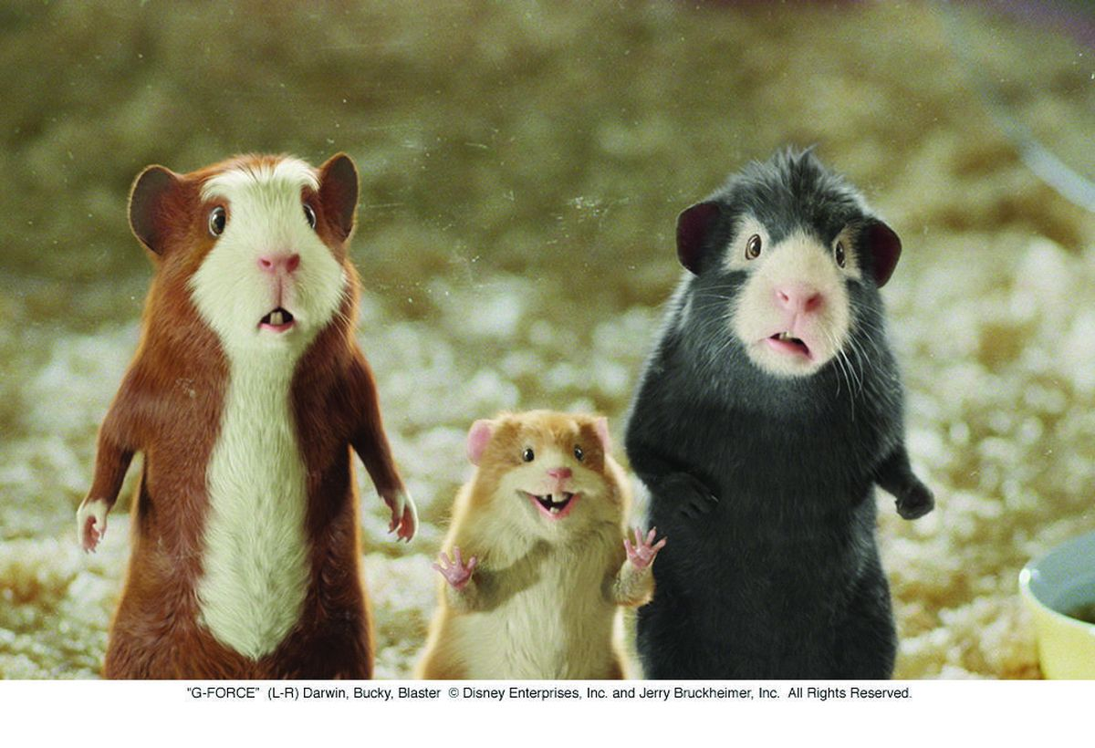 g force Watch video directed by hoyt yeatman with will arnett, penélope cruz, zach galifianakis, bill nighy a specially trained squad of guinea pigs is dispatched to stop a diabolical.