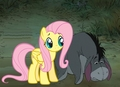 Eeyore and Fluttershy