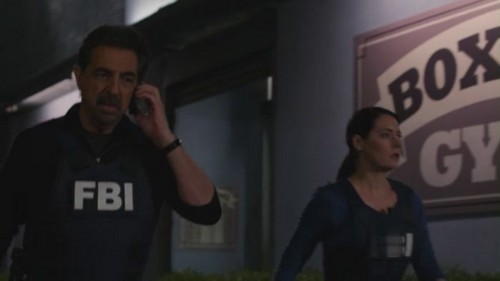 Criminal Minds achtergrond entitled Emily Prentiss - 7x10 The Bittersweet Science