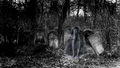 Eva Green, ghost retouched, cemetery, horror, WALLPAPER 1920x1080 - eva-green wallpaper