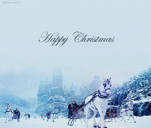Harry Potter images Happy Christmas wallpaper and background ...