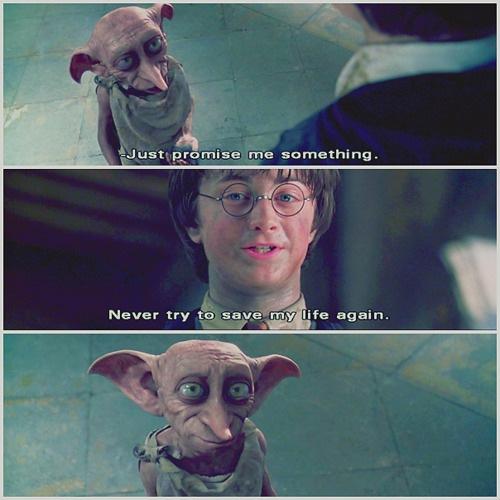 Harry & Dobby