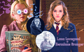 Hermione Granger and Luna Lovegood - hermione-granger-and-luna-lovegood-friendship fan art
