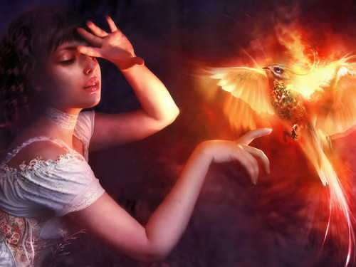 Hot phoenix