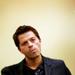 Misha Icons