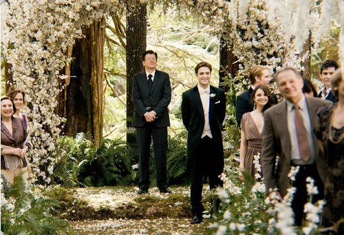 New BD Part 1 stills - twilight-series Photo