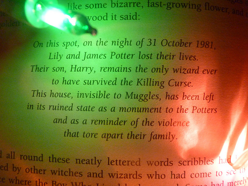 R.I.P Lily and James Potter