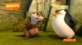 S&M - penguins-of-madagascar screencap