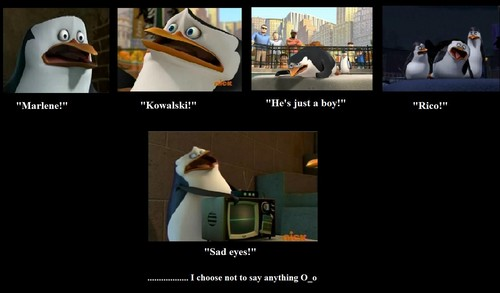 Penguins of Madagascar پیپر وال titled Skipper yells in pain